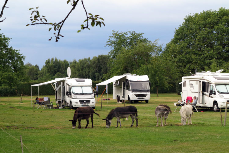 Camping ved Bodensjøen
